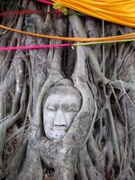 Ayutthaya Stock photo [954975] Ayutthaya