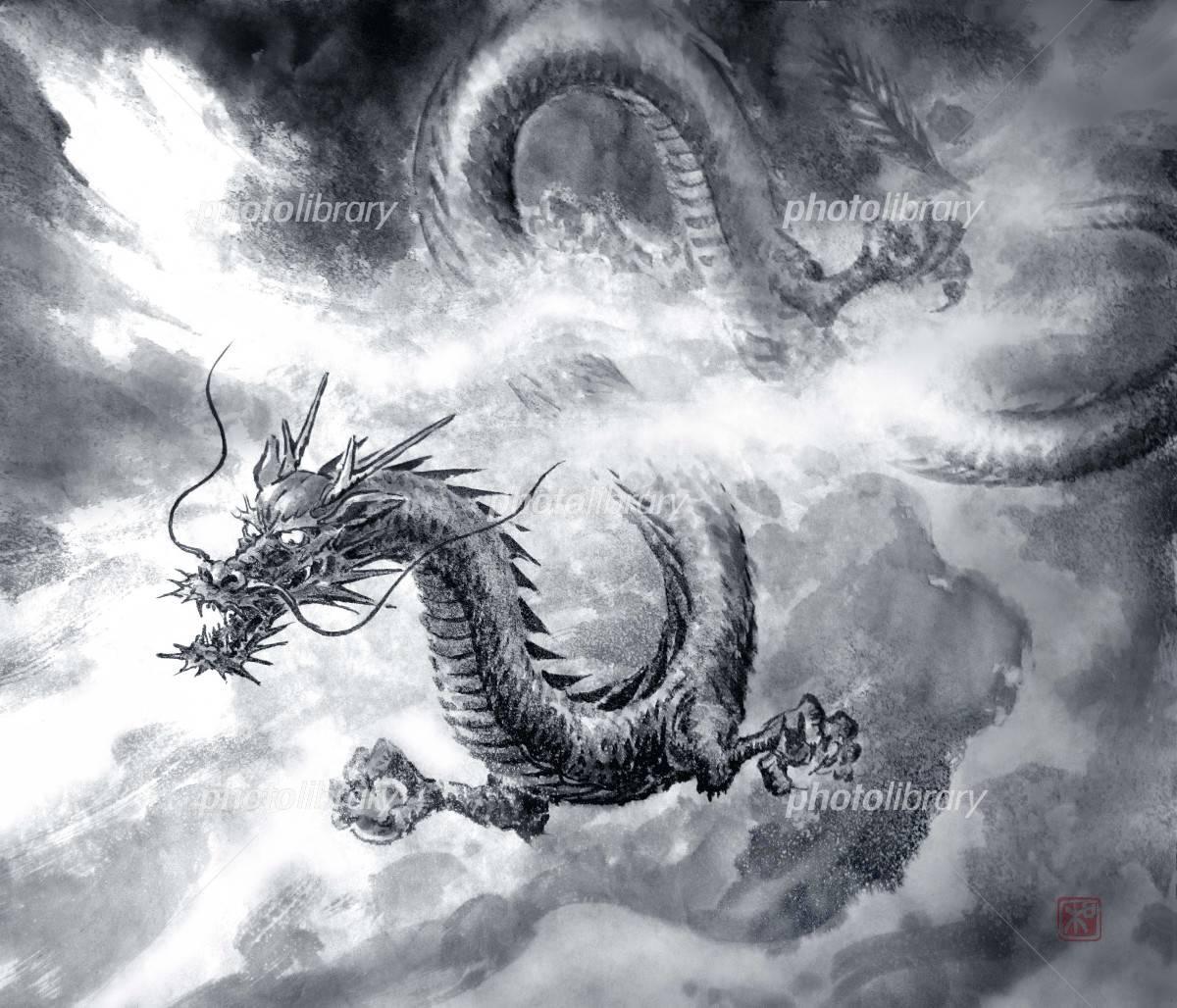 龍の画像 p1_22