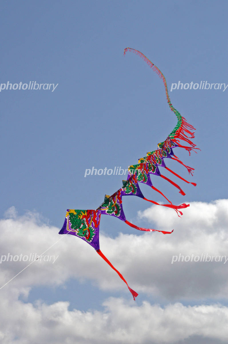 Ream kite Photo