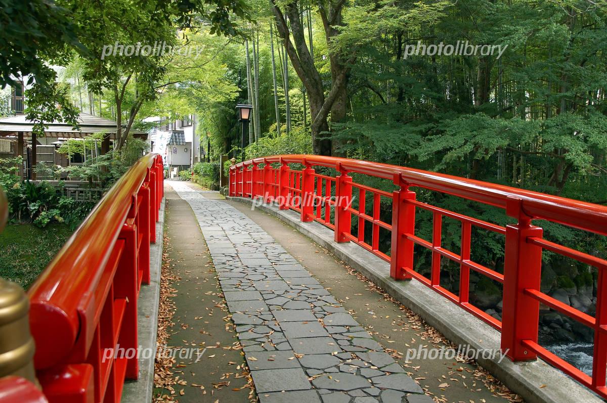 朱塗りの橋と竹林ともみじ 日本...