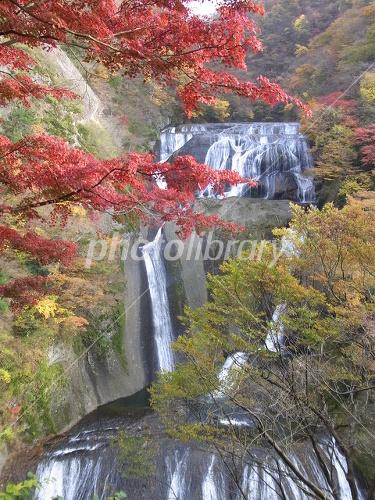 紅葉の袋田の滝-写真素材