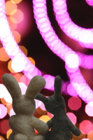 Couple of rabbit Stock photo [1062319] Illumination