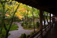 Autumn of Guangming Zen temple Stock photo [1067850] Autumn
