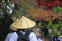 Autumn of Shikoku pilgrimage Stock photo [1068771] Shikoku