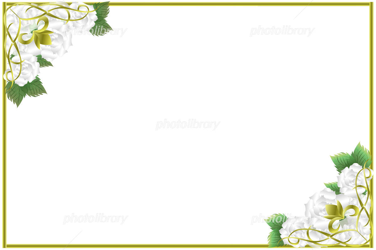 白い薔薇のフレーム イラスト素材 [ 1167715 ] 無料素材- フォトライブ