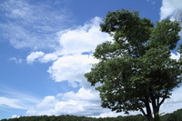 Blue sky and clouds and Taiki Stock photo [1275803] Blue