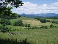 Tokachi ranch and Hidaka Stock photo [1360836] Hokkaido