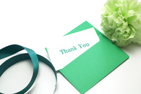 Green Carnation and card Stock photo [1361696] Cart