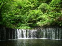 Shiraito falls Stock photo [1447310] Shiraito