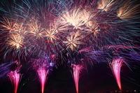 Edogawa Ichikawa fireworks Stock photo [1447558] Edogawa