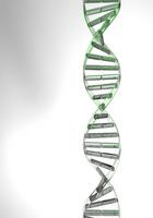 Translucent green gene CG [1455085] Gene