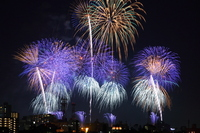 Tsuchiura fireworks Stock photo [1546722] Competitions