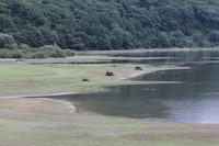 Lake Hibara lakeside Stock photo [1554410] August