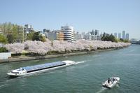 Spring Okawa Stock photo [1657823] Water-bus