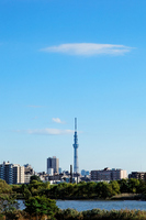 hand residential and the Tokyo Sky Tree of river autumn blue sky spread Stock photo [1657859] Landscape