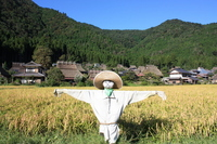 Scarecrow of Miyama Stock photo [1658256] Scarecrow