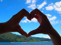 Heart to make two people Stock photo [1659067] Hart