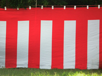 Red and white curtain Stock photo [1659857] Red