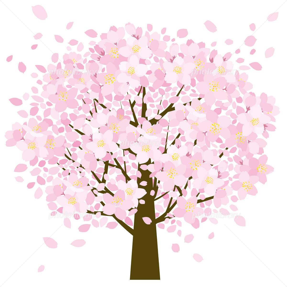 桜の樹 イラスト素材 1831935 フォトライブラリー Photolibrary