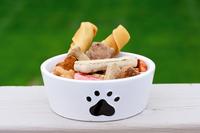 Dog snacks Stock photo [1828116] Dogs