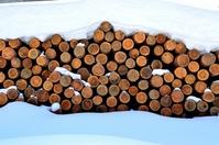 Timber Stock photo [1830184] Wood