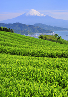 Landscape from Nihondaira Stock photo [1939927] Mt.