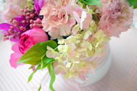 Pastel pink arrangement of hydrangea Stock photo [1940383] Hydrangea