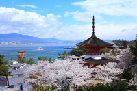 Hanasaki District Miyajima Stock photo [2050158] Landscape