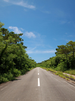 Beautiful road of Shimojishima Stock photo [2053224] Road
