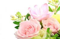 Flower arrangement Stock photo [2152681] Flower