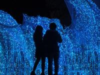 Illumination of the silhouette Stock photo [2264373] Illumination
