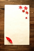 Red maple and paper cranes Stock photo [2264455] Orizuru