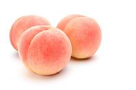 Peach white back Stock photo [2272112] Peach