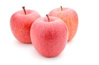 Apple white back Stock photo [2272787] Apple