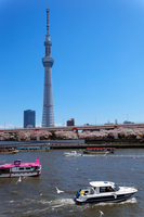 Pleasure boat and Tokyo Sky Tree haunts Sumida River of Hanami Stock photo [2275200] Landscape