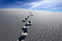 Footprints of white sand dunes Stock photo [2275756] White