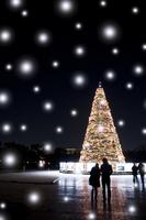 Christmas Dating Stock photo [2278276] Christmas
