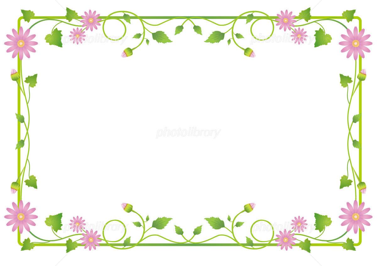 花フレームセネシオ無地 イラスト素材 2400252 フォトライブ