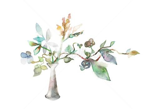 花瓶と植物ドライフラワー イラスト素材 2405345 フォトライブ