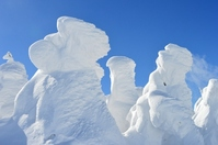 Snow monsters Stock photo [2401815] Rime