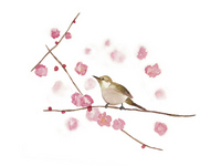 Pink flowers and birds [2407605] Flower