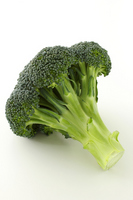 Broccoli Stock photo [2514367] Broccoli