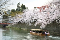 Heian Jingu Spring Lake Biwa Canal Stock photo [2522703] Lake