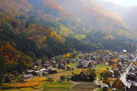 Of autumn leaves Shirakawa-go Stock photo [2523279] Shirakawa-go