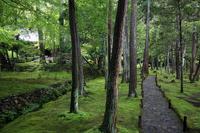 Saihoji Temple garden Stock photo [2642895] Saihoji