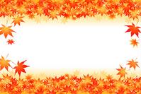 Autumn leaves [2723829] Maples