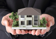 The model of the palm in the residential Stock photo [2724792] House