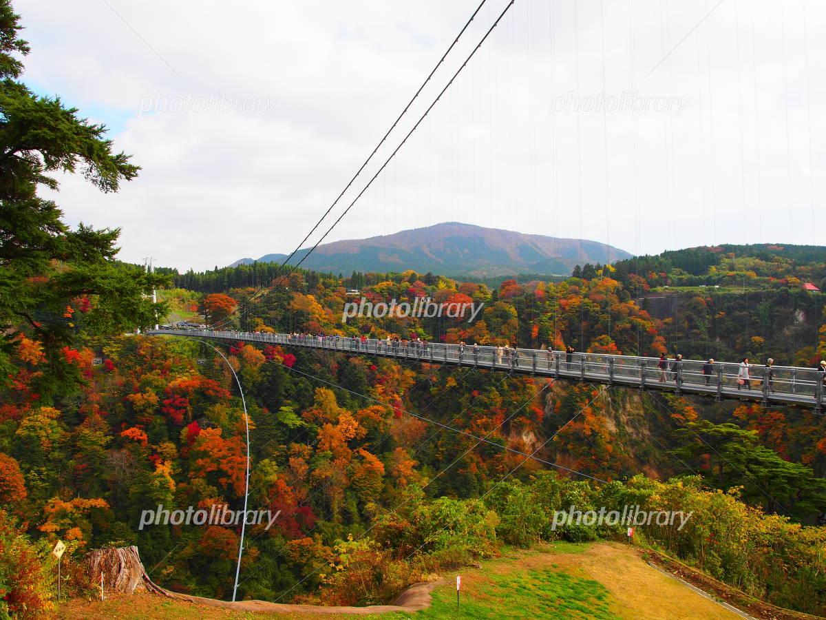 Kokonoe Yume-dai suspension bridge Photo