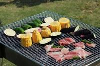 Barbecue Stock photo [2815141] Barbecue