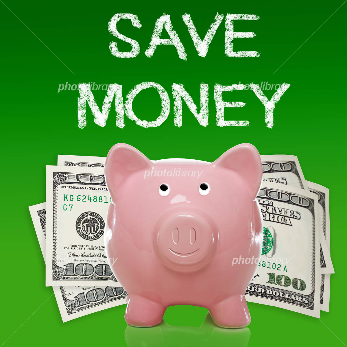 Piggy bank and dollar bill of pig Photo